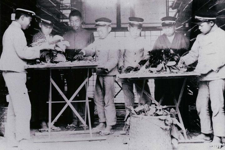 相楽郡立農林学校(今の木津高校) 大正2(1913)年